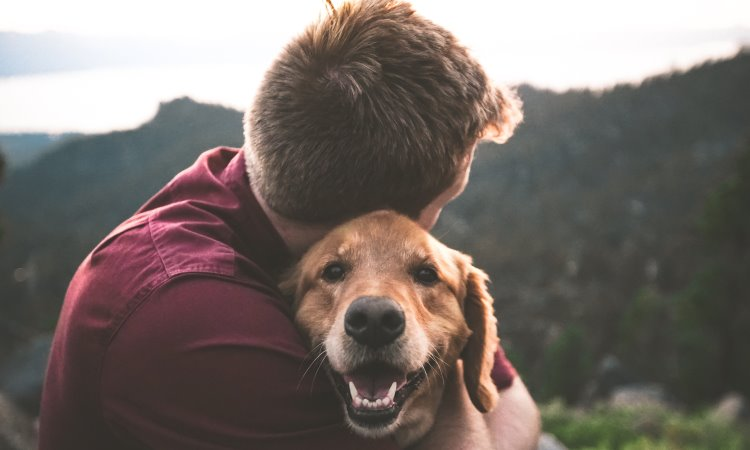 Study Says How Pets Improve Mental health and Boost Mood